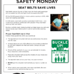 Safety Tuesday – Seat Belts Saves Lives